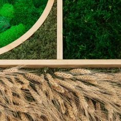 Besides plants, what do you know about biophilic design? - DesignWanted