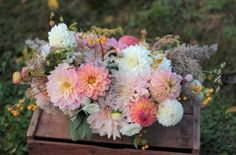 Love 'n Fresh Flowers centerpiece of dahlias