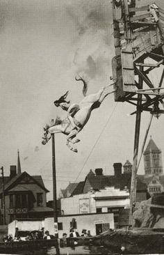 Sonora Webster Carver -- and her diving horse. Wild Hearts Can't Be Broken. Horse diving shape for tattoo? Wild Hearts, Sonora Webster, Vintage Photographs, Vintage Photos, High Diving, Foto Picture, Photo Libre, Vintage Circus, Vintage Horse