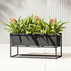 Shop kronos low planter.   Industrial planter gives rise to greens in matte carbon powdercoat.  Nested within sculptural iron frame, galvanized steel boxes remove for easy planting and watering.  Arrange together to create a hi/lo effect, indoors or out.