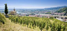 La #Bourgogne, #France