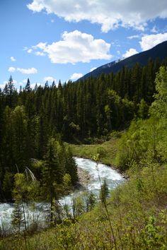 Il y a quelques jours, je vous avez laissés à Jasper où je venais d'arriver après un périple de 3 jours en train. A peine installée à mon… Jasper Alberta, Alberta Canada, Venus, Parc National, Train, Mountains, Nature, Canadian Rockies, Naturaleza