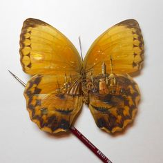 Hasan Kale is the Turkish artist has a special masterpiece of painting on the tiny objects. He uses small tools as his canvas miniature painting like wings of Detailed Paintings, Amazing Paintings, Amazing Art, Wonderful Things, Art Paintings, Nice Things, Painting Art, Watercolor Painting, Awesome