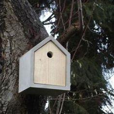 Monoply birdhouse week. Concrete monopoly birdhouse. Rohbau Birdhouse.