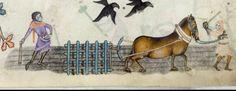 Luttrel psalter work horse