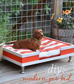 really cute dog bed, will consider making one like it bug would choose a different cokour maybe a blue or a purple. #DIY #dog #bed