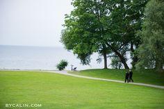 Paletta Mansion Wedding Photography - Dream Wedding, Palette, Wedding Photography, Mansions, Beach, Manor Houses, The Beach, Villas, Pallets