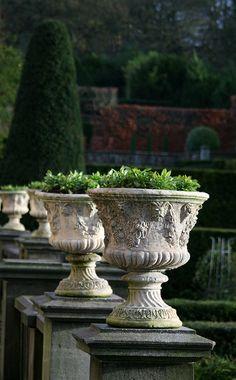 Row of garden urns planted # Formal Gardens, Outdoor Gardens, Biddulph Grange Gardens, Gray Garden, Formal Garden Design, Urn Planters, Stone Planters, Pot Jardin, Garden Floor