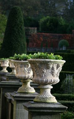 beautiful urns