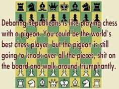 Playing chess with a pigeon