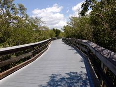 Clam Pass Beach-Naples, Florida...awesome walkway through the mangroves, great little food stand, and an awesome beach to boot!