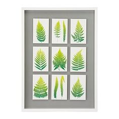 Ready to hang - Frames & pictures - IKEA
