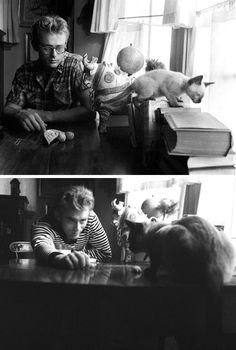 James Dean & Marcus his Siamese kitten, bought for him as a gift from Elizabeth Taylor.