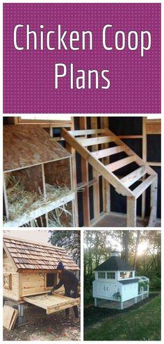 A Frame Chicken Coop, Walk In Chicken Coop, Chicken Coop Garden, Cute Chicken Coops, Chicken Coop Pallets, Diy Chicken Coop Plans, City Farm, Garden In The Woods, Contemporary Garden