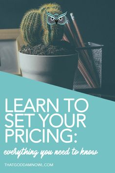 Learn to set your pricing: everything you need to know about valuating your services http://www.thatgoddamnowl.com/blog/set-pricing-for-your-services