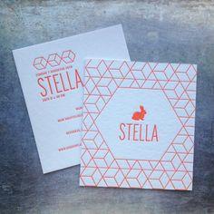 Welcome Stella! © 2016 JULIE VANGEEL ALL RIGHTS RESERVED www.julievangeel.be…