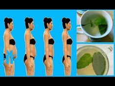 10 Best Herbs For Flushing Belly Fat, Removing Toxins And Skyrocketing M...
