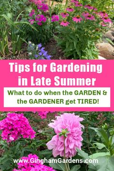 Enjoy a home garden tour with lots of flower garden ideas. Also includes some really great Tips for Gardening in Late Summer and how to spruce up your flower gardens and keep your gardens looking good in the toughest gardening months. #flowergardenpictures #daylilies #dahlias Flower Garden Borders, Flower Garden Pictures, Flower Gardening, Planting Flowers, Garden Inspiration, Garden Ideas, Growing Dahlias, Garden Journal, Garden Maintenance