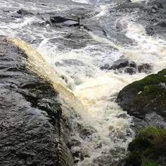 #WonderWatch 2015-91 Rush Flush #Waterfall #UpperDelawareRiverRegion #PoconoMtns #MarvelsOfNature #Flow #Listen #TakeONPocono #water #WildWater #Zen #Refreshing #Revitalize #SloMo