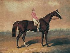 Birdcatcher(1833)Sir Hercules- Guiccioli By Bob Booty. 4x4 To Bagot, 4x5 To Highflyer, 5x5x5 To Eclipse, 5x5x5x5x5 To Herod. 15 Starts 7 Wins. His Sire Family Consists Mostly Of Eclipse With One Noted Exception(Dam Of Whalebone Is From Highflyer's Blue Hen Daughter Prunella) Female Side Of Birdcatcher Is Entirely From Herod's Immediate Family. Very Important Sire In England.
