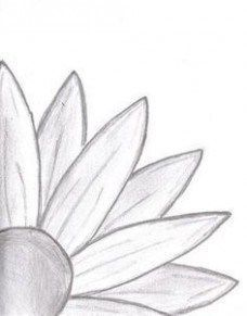 Doodle Daisy Drawing: I started drawing and ended up with this. a daisy… Doodle Daisy Drawing: I started drawing and ended up with this. Cute Easy Drawings, Pencil Art Drawings, Drawing Sketches, Art Sketches, Easy Drawings Of Flowers, Sketching, Easy To Draw Flowers, Easy Nature Drawings, Easy Sketches To Draw