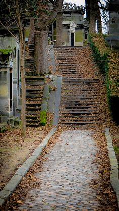 Automne dans décadence | Flickr : partage de photos !