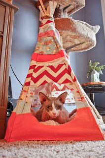 DIY Cat Teepee. I wonder if my cats would use this. It would be cute decoration even if they didnt!