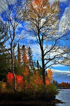 Autumn Landscape, Fall, Colors