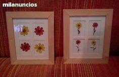 MIL ANUNCIOS.COM - Cuadros flores secas. Compra-Venta de artículos de arte y decoración cuadros flores secas