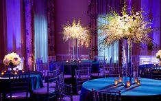 Pinspotting and Uplighting at Arlington Hall Dallas Texas