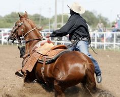 56th annual Cowboy Roping Fiesta : San Angelo Photo Galleries ... www.gosanangelo.com - 607 × 490 - Search by image Previous; 11 of 14; Next. Fred Whitfield of Hockley gets a time of 12:26 during his first run Oct. Photo by Cynthia Esparza