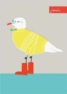 Cecil the Seagull #Joules #Seagull