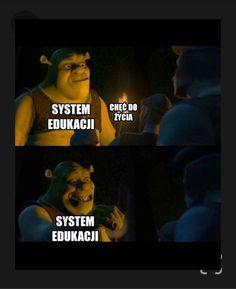 Polish Memes, Best Memes Ever, Bad Memes, Quality Memes, History Memes, School Memes, Just Smile, Really Funny, Funny Photos