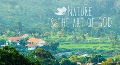 Nature is the most bautiful art