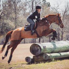 """""""Jumping horses of all kinds, appreciate knowing exactly where their rider's position & balance will be, so they can rely on it."""" - Rob Gage"""