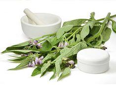 Herbal Remedies for Cold Arthritis, Mortar And Pestle, Herbal Remedies, Panama, Herbalism, Food, Battaglia, Fitness, Leaves