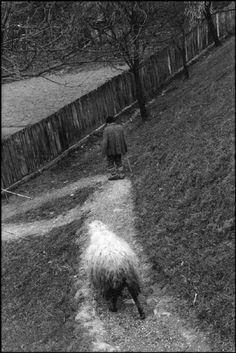 Josef Koudelka - Transylvania. 1999.