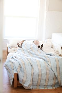 Dreamy Whites: A Trundle Bed for the Boys, Freddie, Frenchies, & Mes Amis Vintage Antique Show