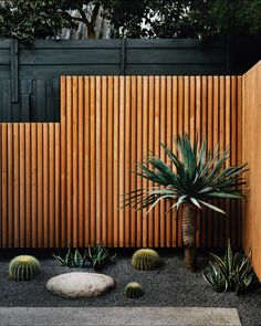 Impressive Small Garden Ideas For Tiny Outdoor Spaces 23 Even if you have a small yard, you can still have an attractive garden. Space should not be a limiting … Backyard Garden Landscape, Small Backyard Landscaping, Landscaping Tips, Backyard Ideas, Black Rock Landscaping, Balcony Garden, Pergola Ideas, Fence Ideas, Cacti Garden