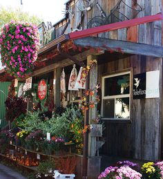 introduce hanging baskets on storefront that stay outside at night