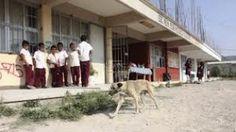 Anuncian cetegistas paro de clases por tiempo indefinido en La Montaña - http://www.tvacapulco.com/anuncian-cetegistas-paro-de-clases-por-tiempo-indefinido-en-la-montana/