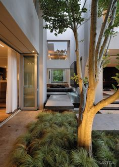 Silverhurst Residence by Saota and Antoni Associates | HomeDSGN, a daily source for inspiration and fresh ideas on interior design and home decoration.
