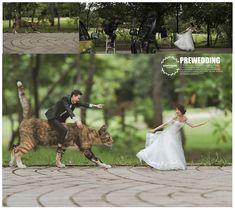 Better in Miniature: Pre-Wedding Photos by Ekkachai Saelow Funny Wedding Photography, Micro Photography, Miniature Photography, Minimal Photography, Photography Lessons, Photoshop Photography, Creative Photography, Couple Photography, Pre Wedding Poses
