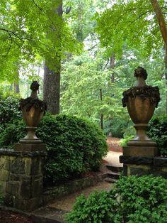 Antique Urns Garden Urns, Garden Gates, Garden Entrance, Cacti Garden, Garden Villa, Terrace Garden, Formal Gardens, Outdoor Gardens, Outdoor Trees