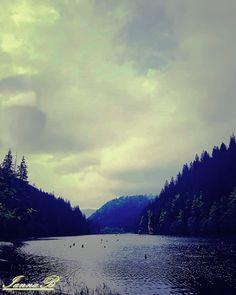 Lacu Rosu River, Mountains, Nature, Outdoor, Outdoors, Naturaleza, Nature Illustration, Outdoor Living, Garden