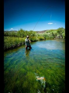 Beautiful!For more fly fishing info follow and subscribe www.theflyreelguide.com Also check out the original pinners site and support