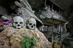 The culture of the death in Toraja area. Bali, Indonesian Art, What A Wonderful World, Spiritual Life, Archipelago, Traditional Art, Where To Go, Rainbow Colors, Wonders Of The World