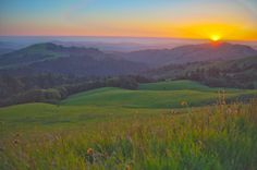 This weekend, get outside and frolic through the flowers from the Peninsula to Point Reyes to (Little) Yosemite.Take on a Russian Ridge Trail Run Feel like picking up the pace? Head to the Russian Ridge down on the Peninsula for some trail running, where slightly less than four miles of trails will ...
