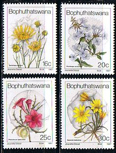 Bophuthatswana 1987 Wild Flowers Set Fine Mint SG 187 90 Scott 18 91          Other African and British Commonwealth Stamps HERE!