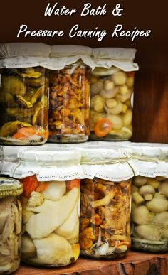 Canning recipes 60 most popular guides to preserve your fruits water bath pressure canning recipes forumfinder Gallery